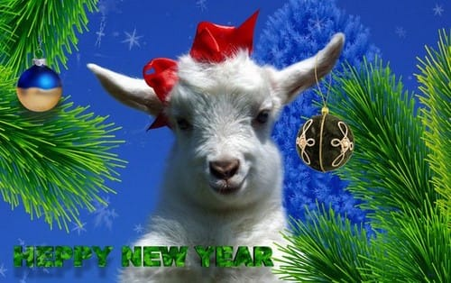 Hình nền năm mới mừng xuân Bính Thân 2016