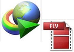 Download Internet Download Manager (IDM)