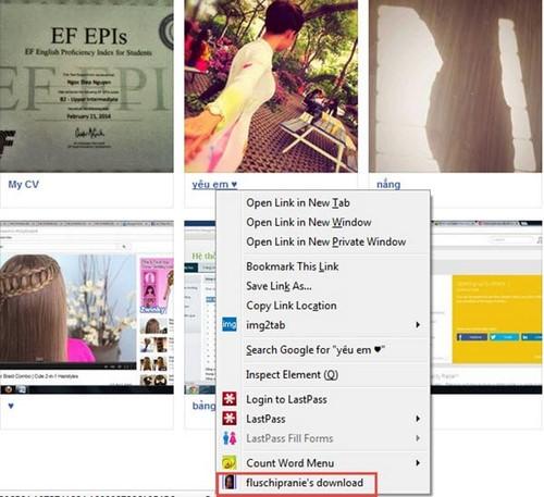 Tải album ảnh Facebook bằng Fluschipranie trên Firefox