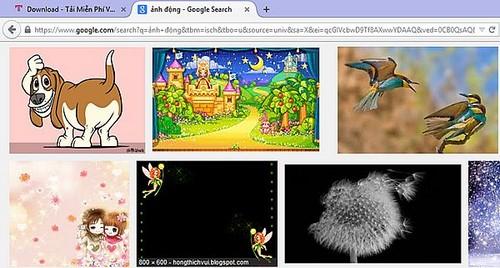 Tải ảnh trên web, lưu nhiều ảnh trên web về máy tính