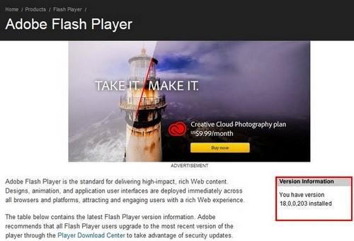 check version flash player