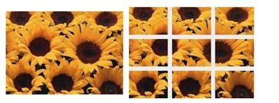 Hướng dẫn tách một ảnh thành nhiều ảnh trong PhotoScape