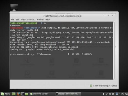 Hướng dẫn cài đặt Google Chrome trên Linux Mint 18