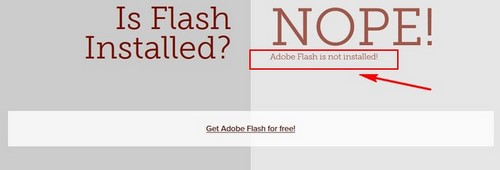 kiem tra may da cai adobe flash player chua