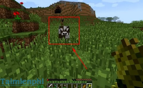 cach nuoi bo trong game minecraft