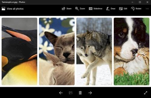 Cách ghép ảnh trực tuyến Online, ghép nhiều ảnh lại với nhau 8
