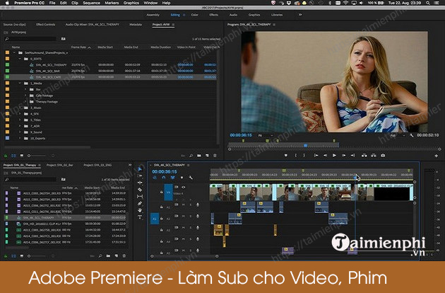 as sub for video adobe premiere