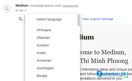 how to use google translate google translate in gmail 3