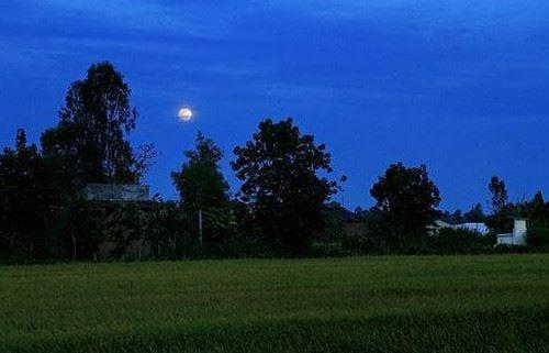 Tả một đêm trăng đẹp 2