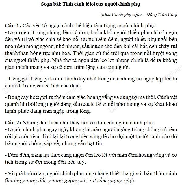 soan bai tinh canh le loi cua nguoi chinh phu