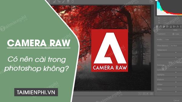 Có nên cài Camera Raw trong Photoshop?