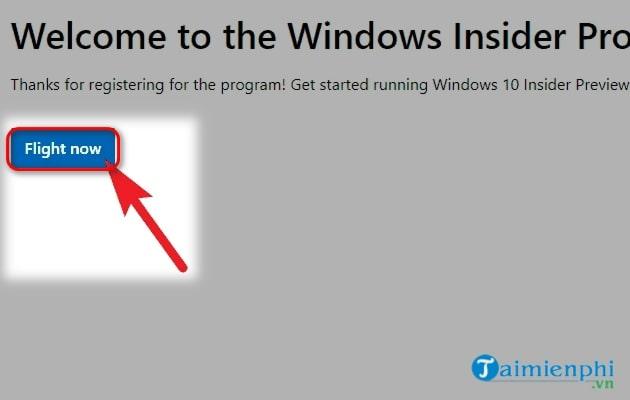 tai windows 11 insider preview