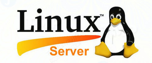 6 ly do tai sao may chu linux tot hon may chu windows