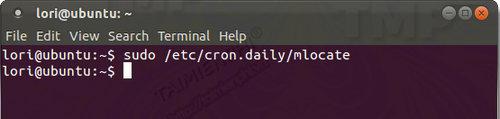 Cách tìm file và thư mục trên Linux