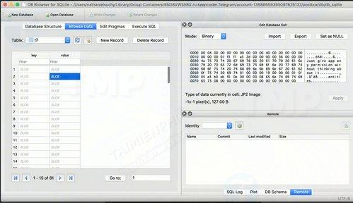 Telegram cho desktop lưu các cuộc trò chuyện dưới dạng Plain Text