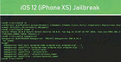 nhom hacker pangu jailbreak thanh cong ios 12 tren iphone xs