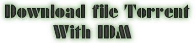 Cách tải file Torrent bằng Internet Download Manager (IDM)
