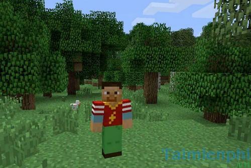 Cách thay skin cho Minecraft, cài skin minecraft 9