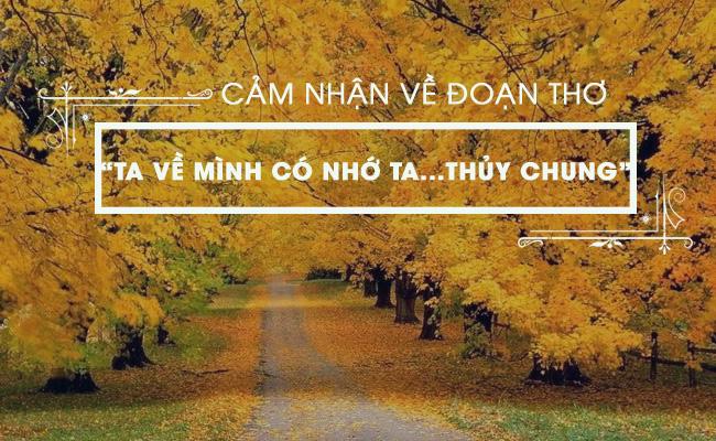 """Cảm nhận về đoạn thơ sau: """"Ta về mình có nhớ ta...Nhớ ai tiếng hát ân tình thuỷ chung"""" trong bài Việt Bắc"""