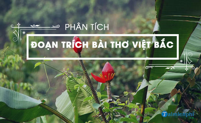 Phân tích đoạn trích bài thơ Việt Bắc 3