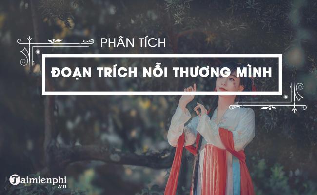 Phân tích đoạn trích Nỗi thương mình trong Truyện Kiều của Nguyễn Du 3