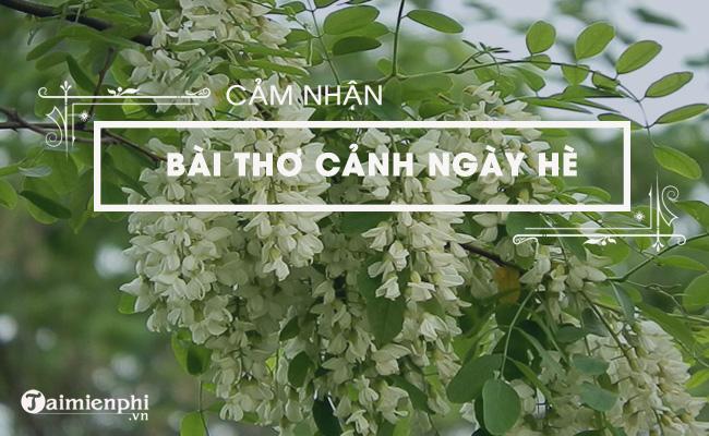 Cảm nhận về bài thơ Cảnh ngày hè của Nguyễn Trãi 2