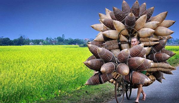 Hình ảnh cảnh đẹp Việt Nam