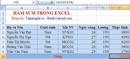 Hàm SUM trong Excel, tính tổng theo hàng dọc 2