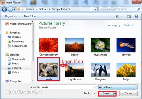 how to add photos in powerpoint