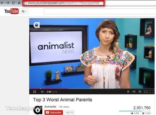Tự động phát lại Video trên Youtube