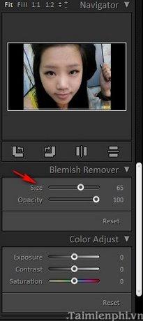 Loại bỏ khuyết điểm trên ảnh bằng Free Photo Blemish Remover