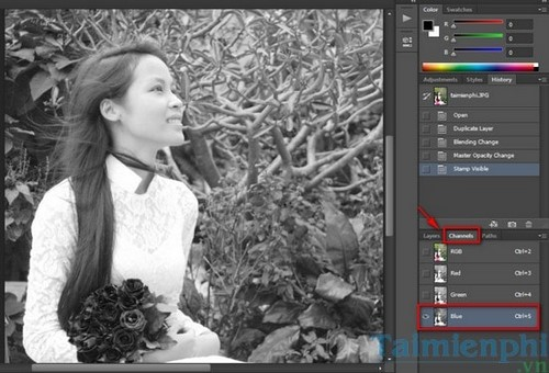 Photoshop - Blend ảnh với gam màu Blue