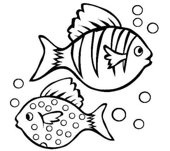 Tranh tô màu con cá 4