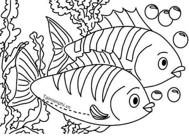 Tranh tô màu con cá 5