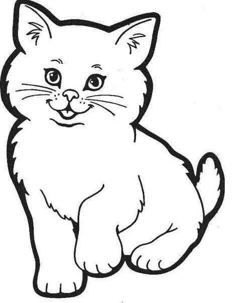 Tranh Tô Màu Con Vật Cho Bé Tập Tô Con Mèo Vịt Gà Cá Thỏ