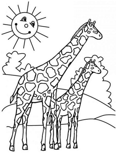 Tranh tô màu con vật cho bé tập tô 20
