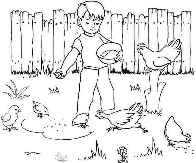 Tranh tô màu con vật cho bé tập tô 7