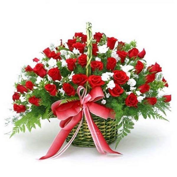 mau lang hoa dep 12
