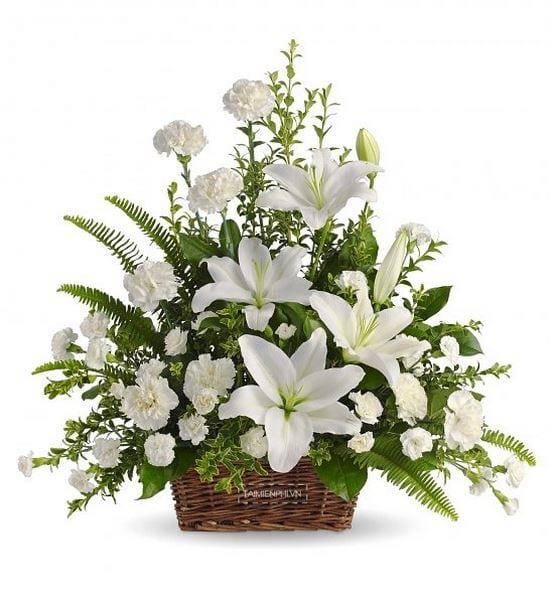 mau lang hoa dep 4