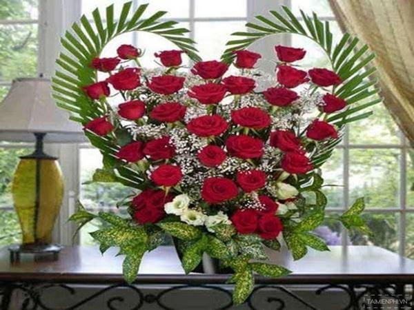 mau lang hoa dep 8
