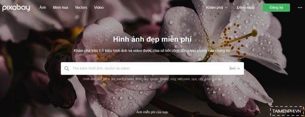 Top Website cung cấp hình ảnh Stock miễn phí tốt nhất