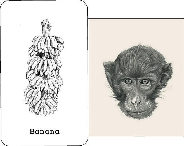 Bộ sưu tập hình ảnh cho App Animal 4D+