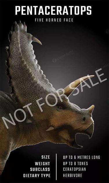 Anh khung long 3 sung pentaceratops