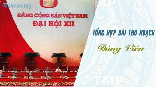 tong hop cac bai thu hoach pho bien hien nay cho dang vien
