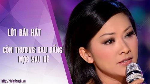 loi bai hat con thuong rau dang moc sau he