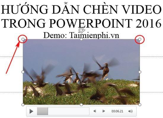 Hướng dẫn chèn video vào PowerPoint 2016 8