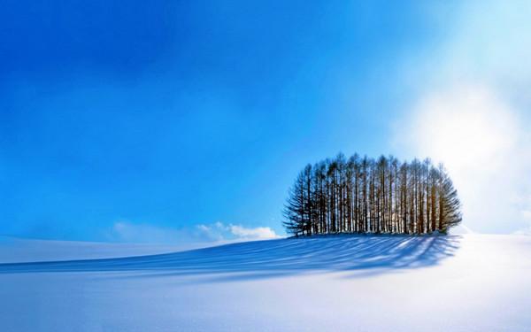 Tổng hợp Hình nền Mùa Đông đẹp nhất