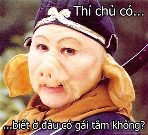 hinh anh che 12