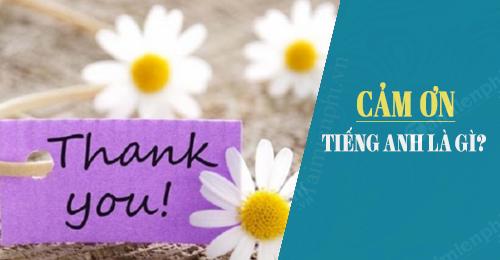 Cách nói Cảm ơn trong tiếng Anh, Thks, Thanks you