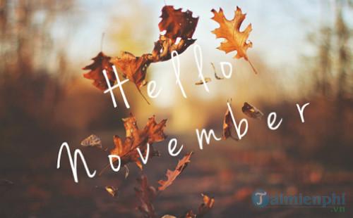 STT tháng 11 hay 15